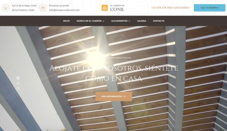 diseño de paginas webs en Conil